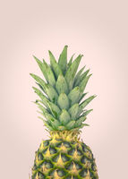 Fresh Organic Pineapple Design