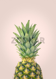 Fresh Organic Pineapple Design