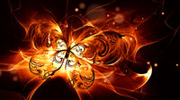 Bright burning butterfly