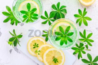Homemade lemonade with sweet woodruff and lemon (Galium odoratum)