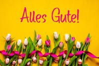 Colorful Tulip, Alles Gute Means Best Wishes, Easter Egg, Yellow Background