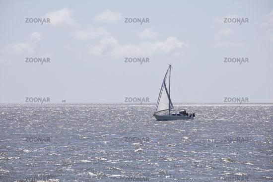 NF_Nordsee_Segelboot_01.tif