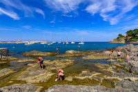People having fun at the tidal flat in Collioure, a seaside resort in Southern France