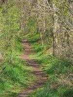 Wandern in der Dingdener Heide
