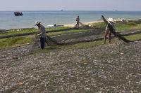 Frauen und Männer sortieren frisch gefangenen Fisch ,Phu Quoc island, Vietnam