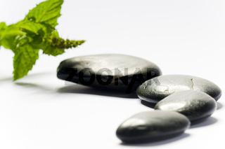 spa steine mit pflanze