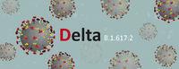 Delta Coronavirus Covid 19 Models Header