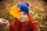 Autumn portrait of boy teen with maple leaves