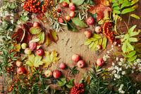 Red rowan berries, small apples, sea buckthorn, wild grape branches, maple leaves and autumn white wildflowers. Autumn background, harvest still life on wooden board.