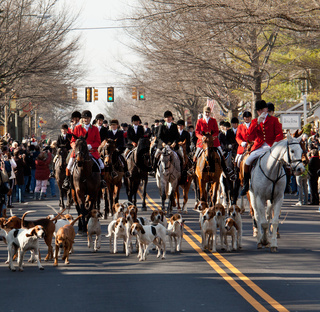 Middleburg hunt in traditional parade