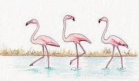 flamingos watercolor illustration