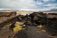 Volcanic rock formation near Dyrholaey, Iceland