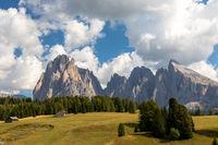 Blick ueber die Seiser Alm, Alpe di Siusi, auf Langkofel und Plattkofel, Suedtirol