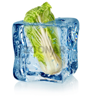 Ice cube and chinese cabbage