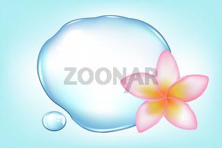 Fragipani Over Water