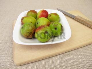 Apfel Früchte vom Speierling Baum, Sorbus domestica