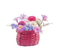 Colorful flowers in a basket on white background. Digital illustration.