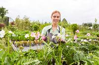 Gärtner Lehrling zwischen Blumen und Pflanzen