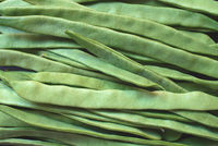 Top view of green beans on dark background