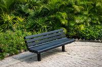 empty bench in park - wooden bench in tropical garden -