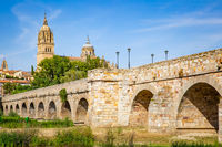 Roman bridge and Cathedral in Salamanca