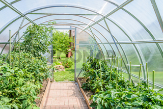 arched greenhouse