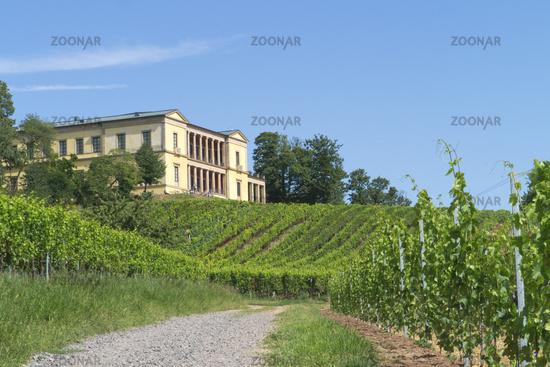 Schloß Villa Ludwigshöhe