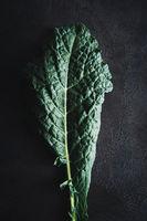 Blätter vom Palmkohl