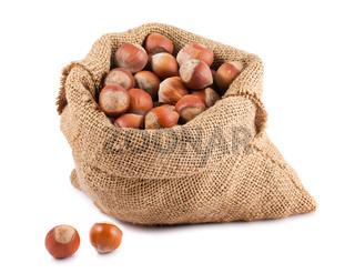 Hazelnuts in canvas sack