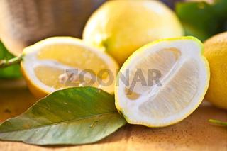 Frische reife Zitronen