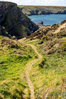 Grassy track leading down to Hells Mouth near Hayle in Cornwall