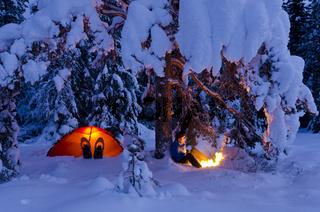 Mann sitzt neben seinerm erleuchtetem Zelt unter einem Baum am Lagerfeuer, Hedmarksvidda