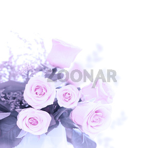 Pink fresh roses bouquet