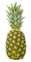 Isolated Organic Pineapple
