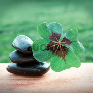 Black spa stones and four leaf clover . Spa background.