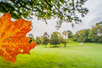 English Garden of Munich with a autumn colored leaf in front of the popular sightseeing destination of the Monopteros temple.