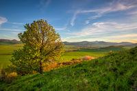 Spring morning in Central Bohemian Highlands.