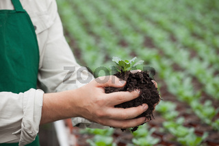 Man in apron holding plant