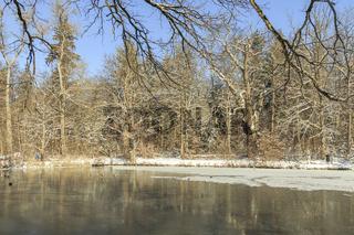 Wintertag am See, Februar