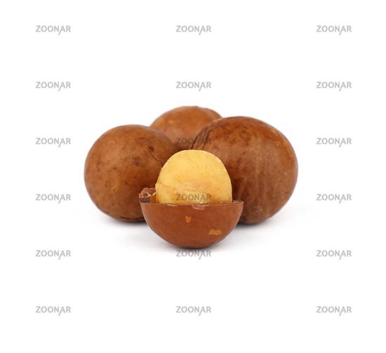 Macadamia nuts isolated on white background