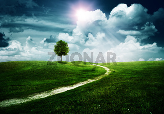 Straight way to the happy future. Abstract natural backgrounds