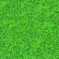 Seamlessly green grass texture background.