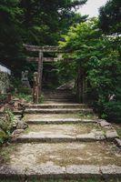 Stone torri gate over a stairs path in park on Mount Misen in Miyajima, Hiroshima, Japan