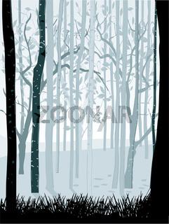 Wald schwarz weiߟ.eps