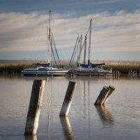 Marina with sailing boats at of City of Rust on lake Neusiedl  in Burgenland on a calm morning