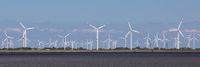 Windräder an der Nordsee in Dithmarschen