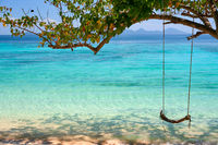 Wooden swing on tropical beach