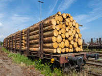 Pile of timber on a railway freight wagon at a switch yard