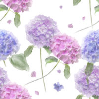Seamless floral design with hydrangea flowers . Endless pattern.