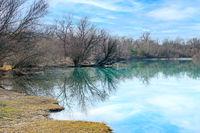 trees reflections at the lake at a sunny day